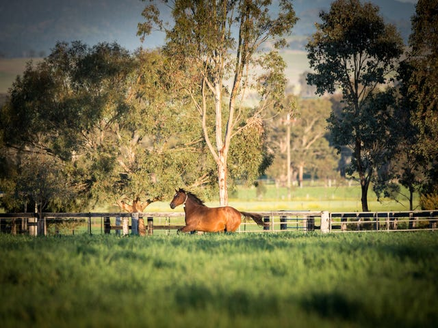 118 Nandowra Road, Scone, NSW 2337