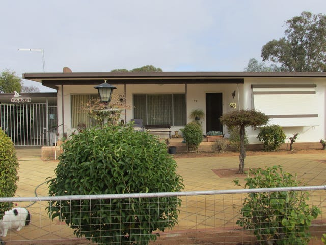 98 ADAMS STREET, Wentworth, NSW 2648