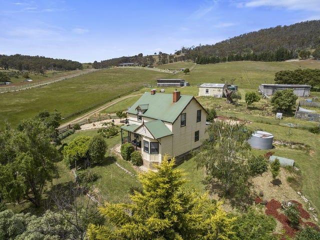 319 Ironstone Gully Road, Lachlan, Tas 7140