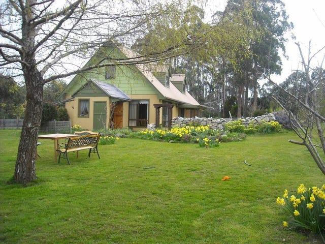 45 Golden Valley Road, Golden Valley, Tas 7304