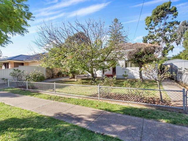 11 Carter Street, Magill, SA 5072