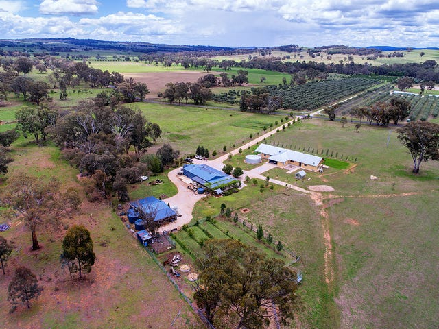 408 Botobolar Road, Mudgee, NSW 2850