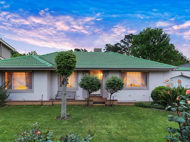 53 Buckley Crescent, Fairview Park, SA 5126