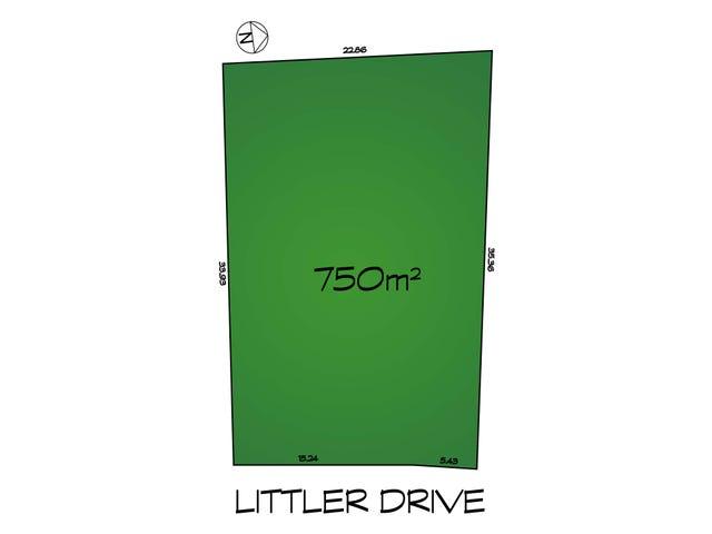 46 Littler Drive, Fairview Park, SA 5126