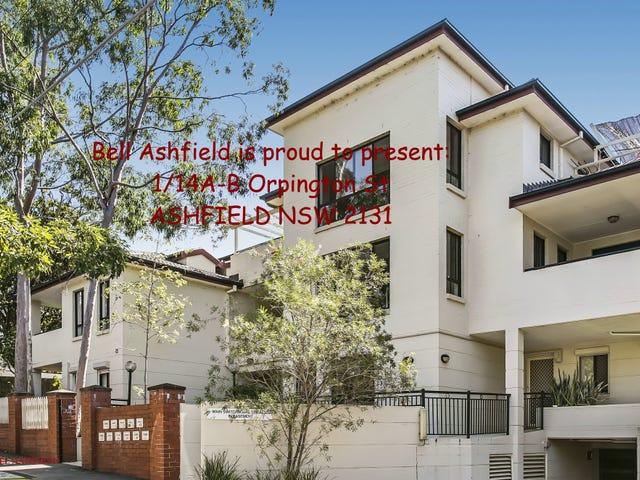 1/14A Orpington St, Ashfield, NSW 2131