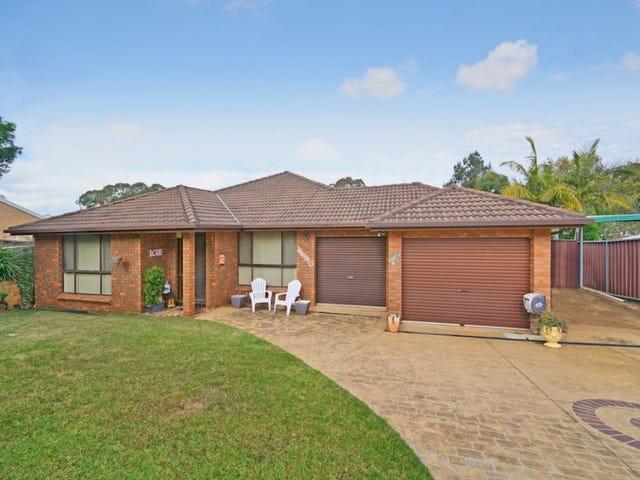 112 Chasselas Avenue, Eschol Park, NSW 2558