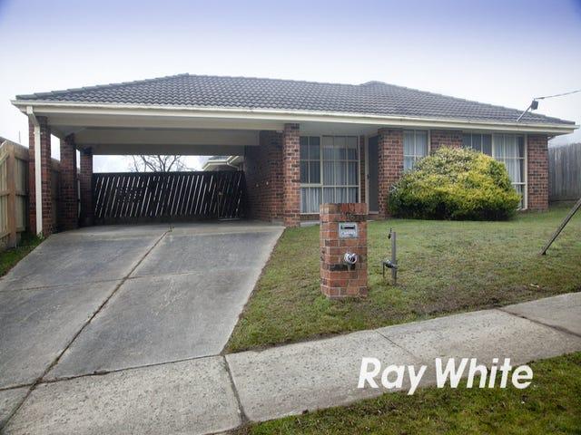 16 Richard Drive, Langwarrin, Vic 3910