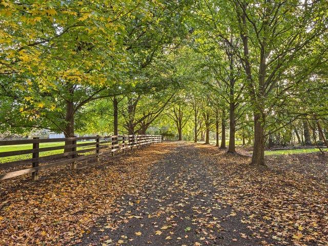 1168 Peats Ridge Road, Peats Ridge, NSW 2250