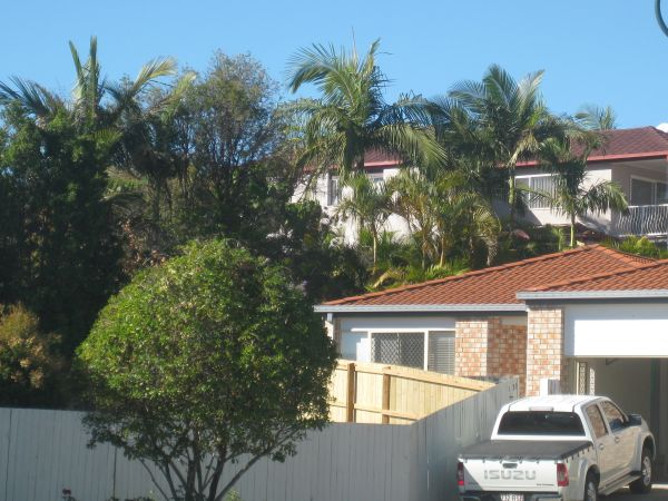 1/20 St Lucia Court, Varsity Lakes, Qld 4227