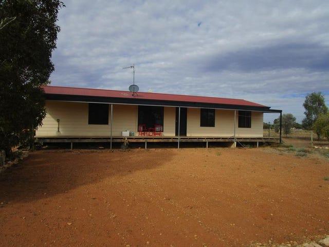 690 Thiele Road, Loveday, SA 5345