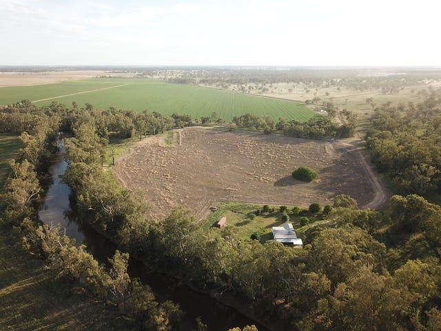 'Yuronah' 1389 Wambianna Road, Warren, NSW 2824