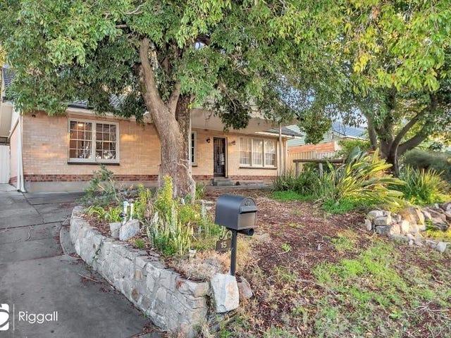 15 Tarraleah Street, Banksia Park, SA 5091