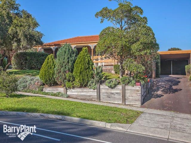 244 James Cook Drive, Endeavour Hills, Vic 3802