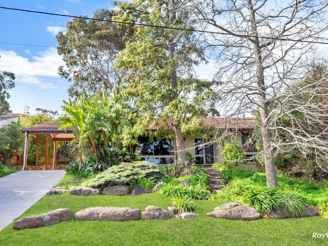 3 Grevillea Drive, Banksia Park, SA 5091