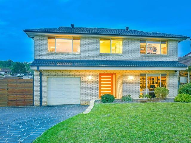 61 Frontignan Street, Eschol Park, NSW 2558