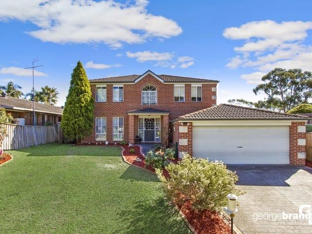 22 Hempstalk Crescent, Kariong, NSW 2250