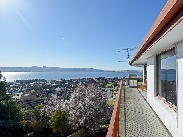 12 Ascot Avenue, Sandy Bay, Tas 7005