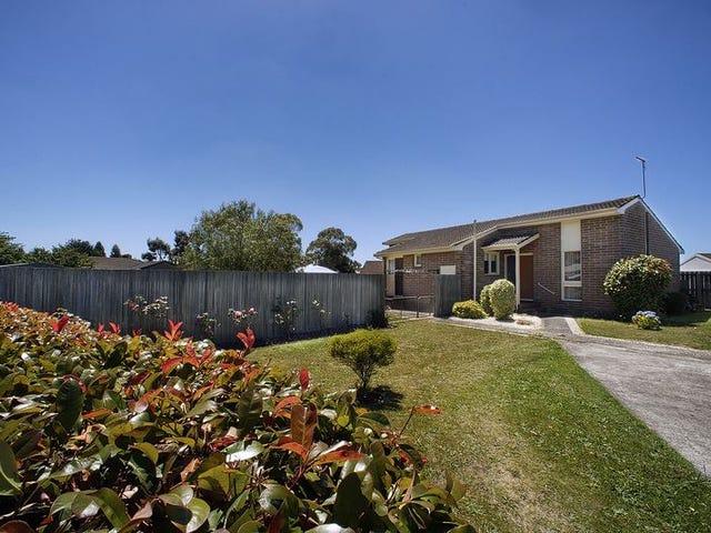 3 Gatty Place, Devonport, Tas 7310