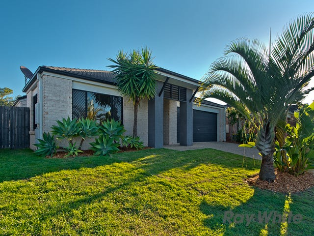 6 Basalt Street, Murrumba Downs, Qld 4503