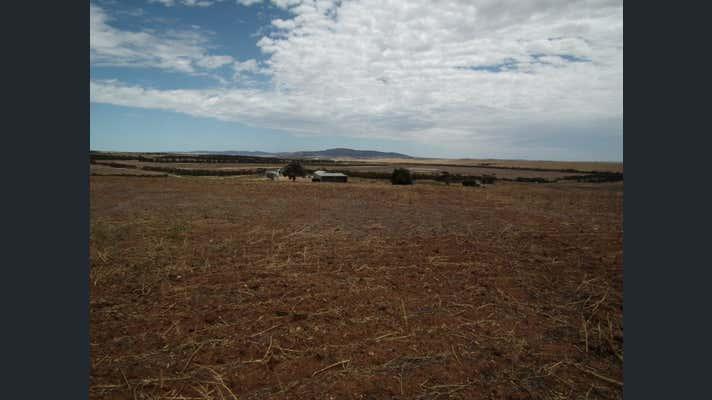 """""""Pindari"""", 0 Carrapee Hill Road Darke Peak SA 5642 - Image 15"""
