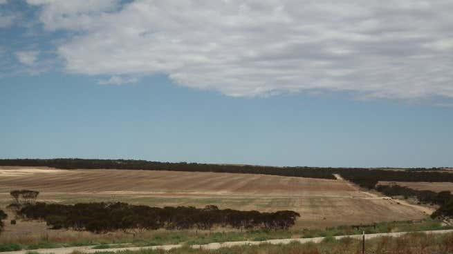 """""""Pindari"""", 0 Carrapee Hill Road Darke Peak SA 5642 - Image 1"""