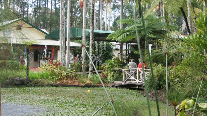 Shop D/50 Pioneer Road Yandina QLD 4561 - Image 4