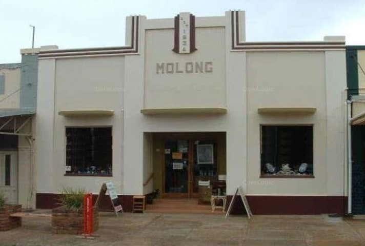 12 Bank Street Molong NSW 2866 - Image 1
