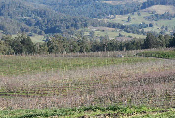 Lot 6 North Huon Road Ranelagh TAS 7109 - Image 1