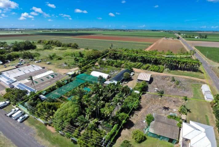 Tropical Paradise Nursery , 67 Bells Road Woongarra QLD 4670 - Image 1