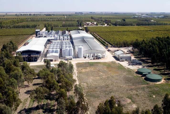 The Poplars Winery, Riddoch Highway Coonawarra SA 5263 - Image 1