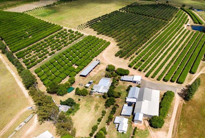 57 Campbell Road Mutchilba QLD 4872 - Image 1