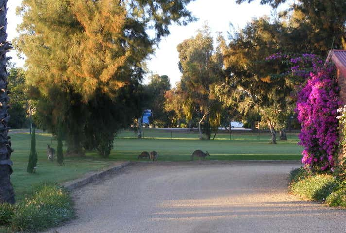 Lot 11 Golf Course Road Barooga NSW 3644 - Image 1