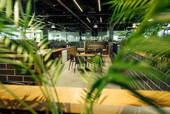 Level 3, CO WORKING/44 Lakeview Drive Scoresby VIC 3179 - Image 1