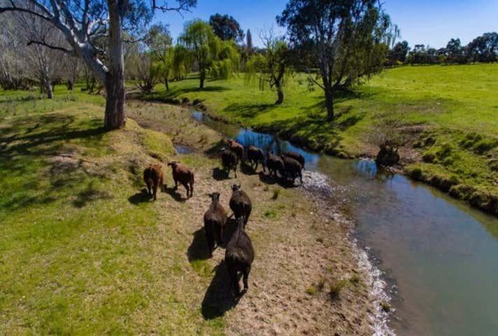 Bowna Road Mullengandra NSW 2644 - Image 1