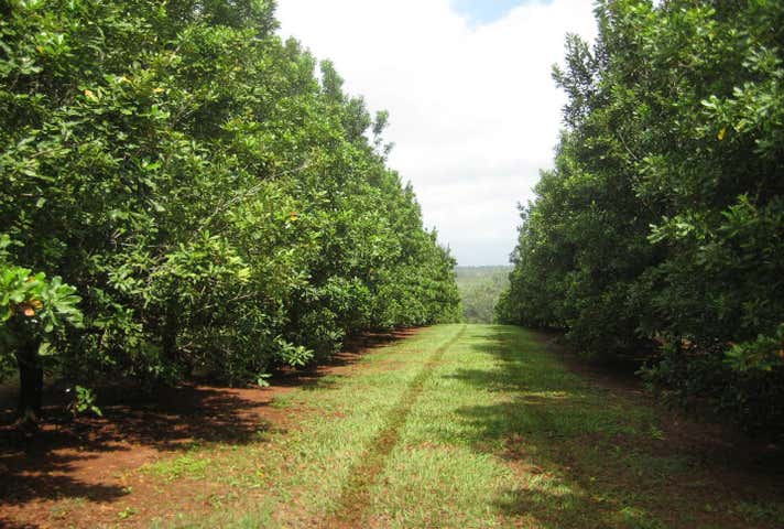 355 Eastern Road, Bauple Forest, Qld 4650