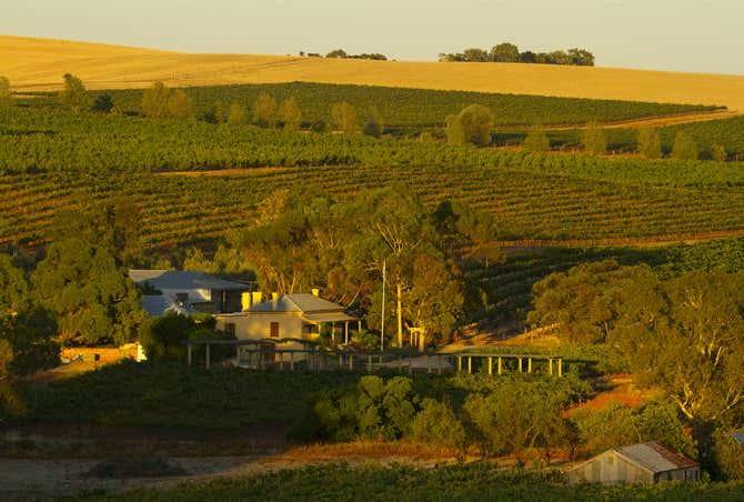 450 Seppeltsfield Road Marananga SA 5355 - Image 1