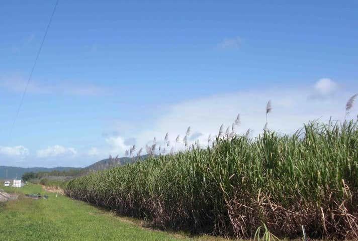 154 Cape Tribulation Road Mossman QLD 4873 - Image 1