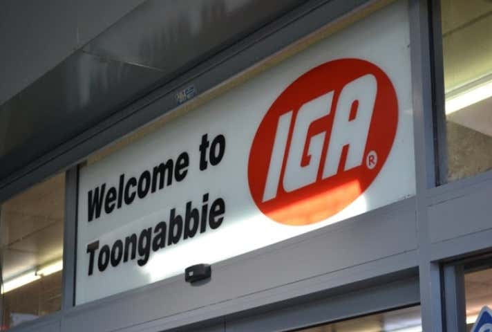 Shopping Centre 4 Claudia Road Toongabbie NSW 2146 - Image 1
