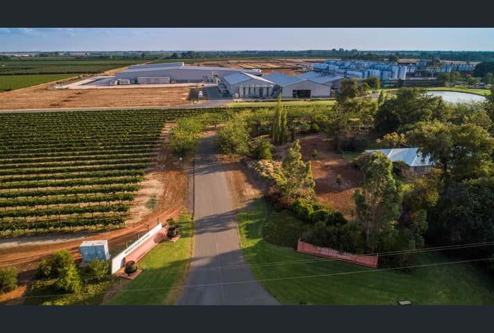 McWilliam's Wines Group 268 Jack McWilliam Road Hanwood NSW 2680 - Image 1