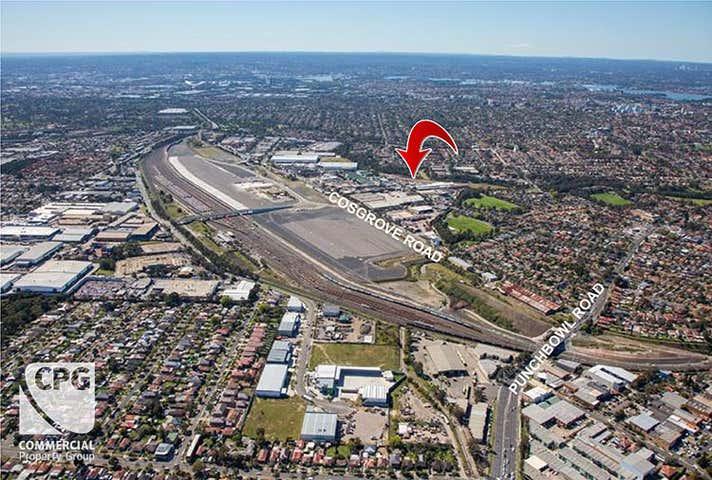 Strathfield South NSW 2136 - Image 1