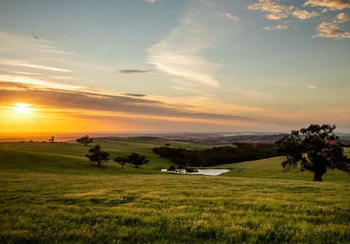 35 Jay Bee Road Meadows SA 5201 - Image 1