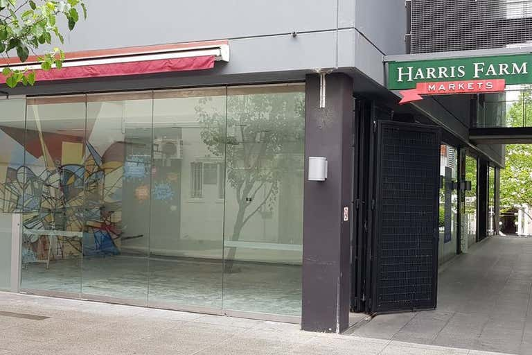 Shop 15/24-30 Springfield Avenue Potts Point NSW 2011 - Image 3