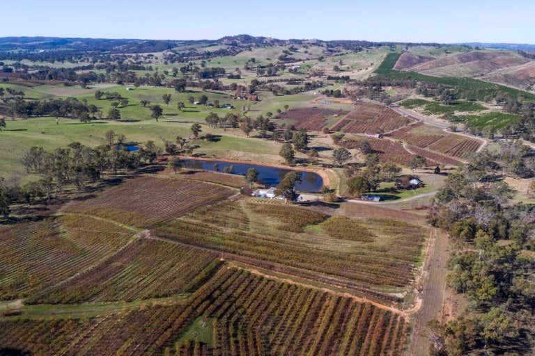 Kersbrook Cherry Farm , 1718  South Para Road Kersbrook SA 5231 - Image 3