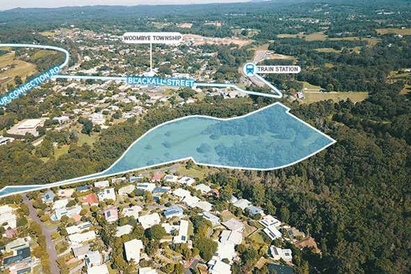 7 Paynter Park Drive Woombye QLD 4559 - Image 1