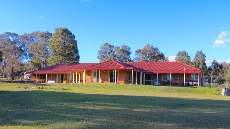 18 Wanaruah Close, Wattle Ponds, NSW 2330