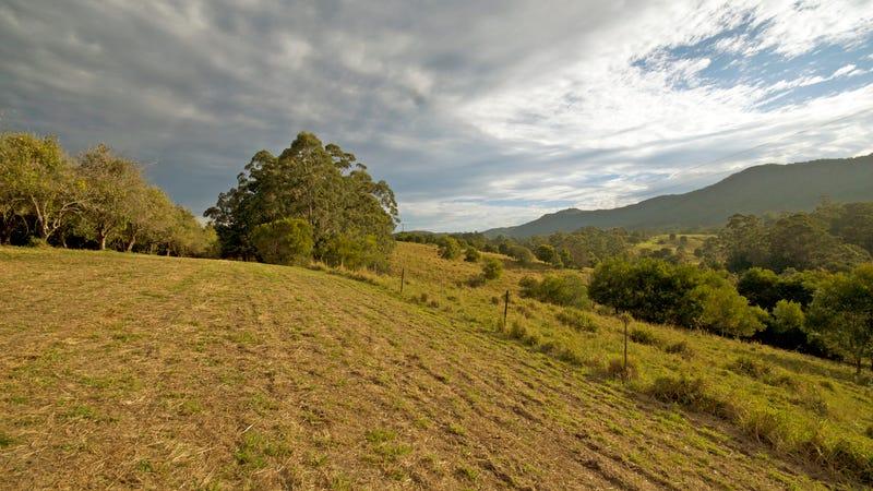 174 Mitchells Road, Valla, NSW 2448