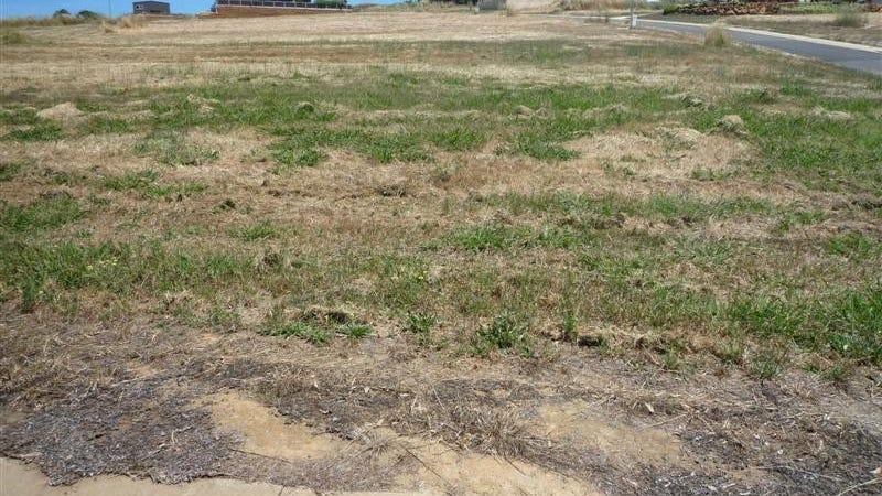 1 Hitchcock Drive, Nannup, WA 6275