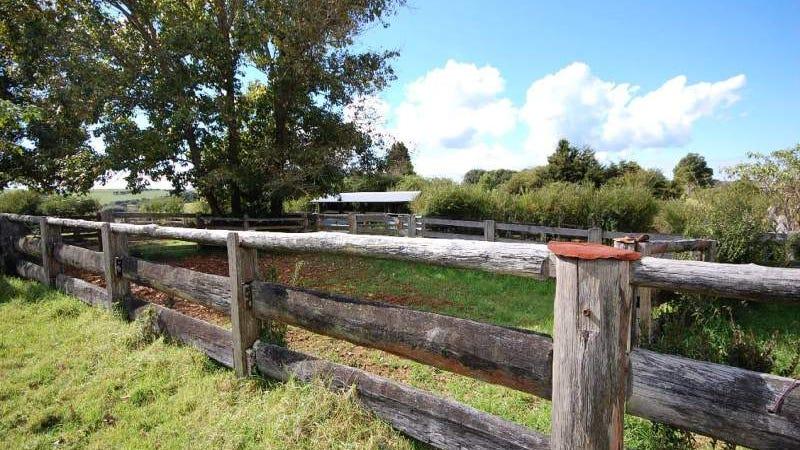 190 Rocky Creek Road, Bielsdown Hills, NSW 2453