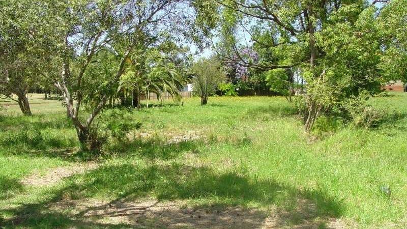 2 Undercliffe Road, Earlwood, NSW 2206