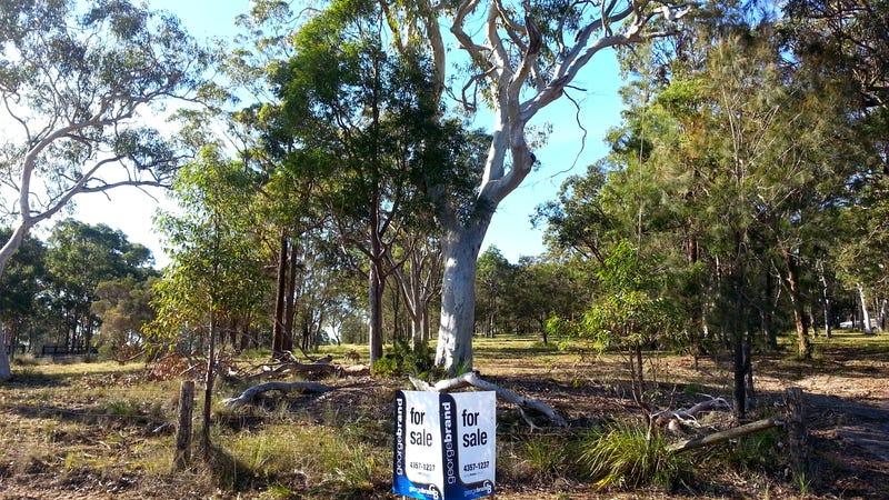 52 Larapinta Drive, Wyee Point, NSW 2259